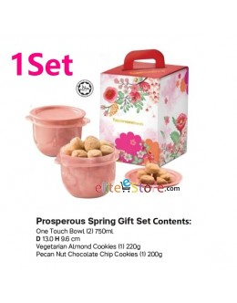 CNY Chinese New Year Cookies Gift Box Set 2019 (Halal حلال )
