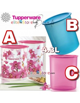 One Touch Canister Large 4.3L [A. Orchird; B. BLUE, C.PINK]