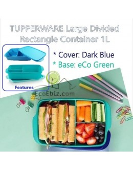 Lunch Box Large Divided Rectangle Container 1L [BLUE/GREEN]