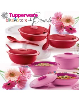 GERBERA Insulated Server with Spoon [ GERBERA RED / PINK] Keep Warm * Microwaveable